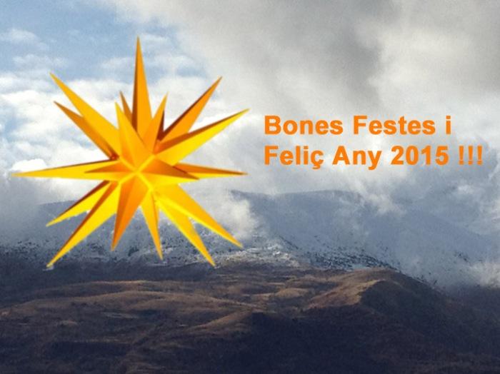 Bones festes i feliç 2015